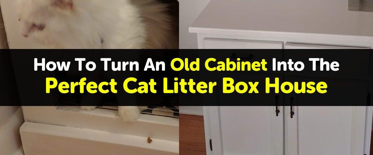 cat-litter-box-house
