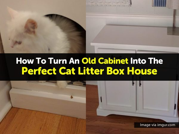 How To Turn An Old Cabinet Into The Perfect Cat Litter Box House