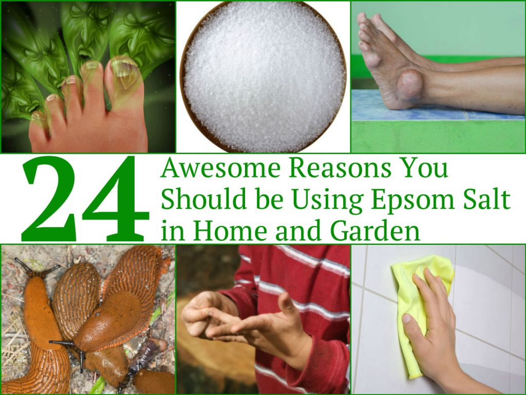 24 Awesome Reasons You Should Be Using Epsom Salt In Home