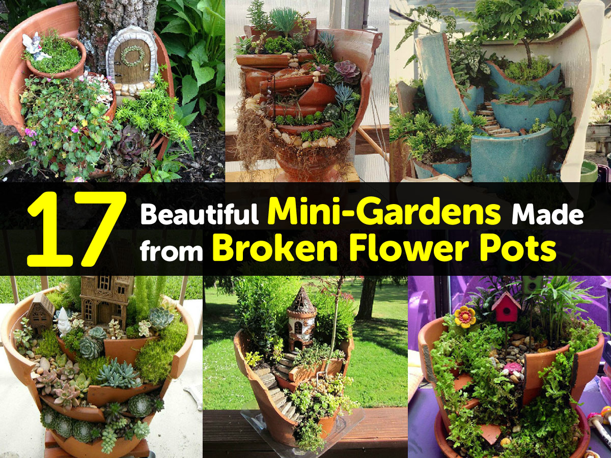 17 Beautiful Mini-Gardens Made from Broken Flower Pots