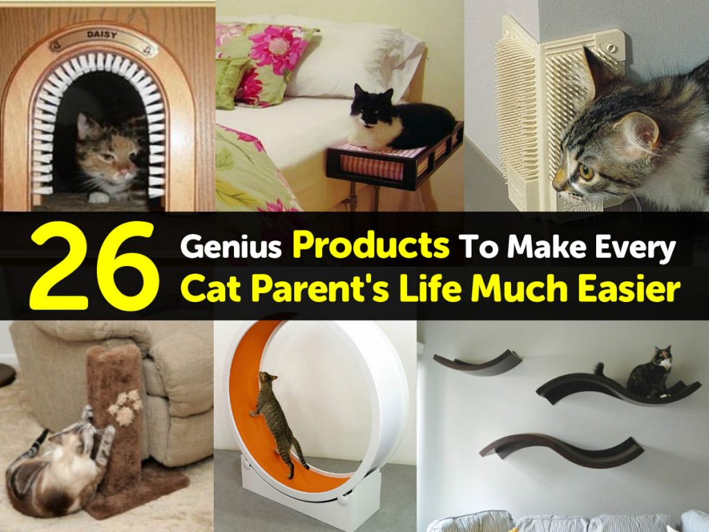 products-for-cat-parents